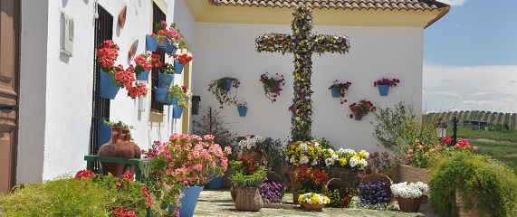 Cordoba 24 Cruces De Mayo De Canete De Las Torres 2019